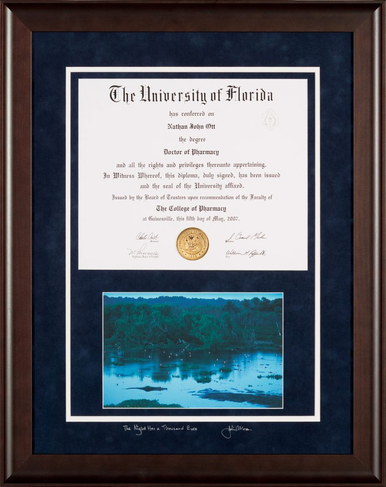 Custom University of Florida Diploma framing Gainesville FL