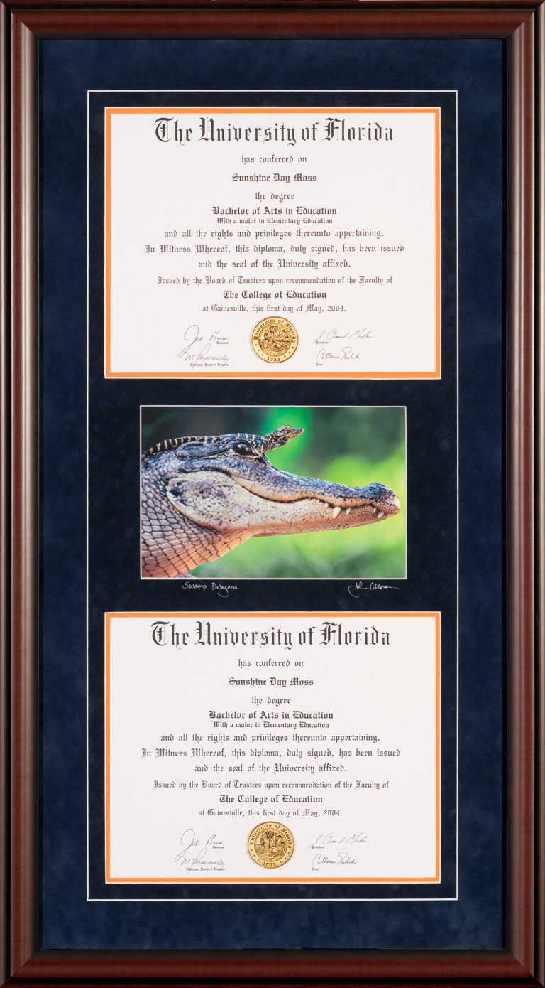 Custom UF Diploma framing Gainesville FL